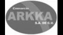 logo de Consorcio Arkka