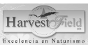 logo de Harvest Field