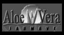 logo de Aloe Jaumave