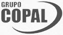 logo de Corrugados y Pallets