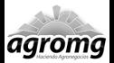 logo de OMG Internacional